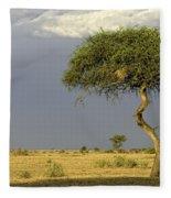 Acacia Trees On Serengeti Fleece Blanket