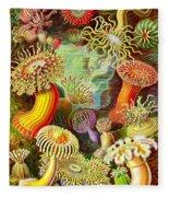 Actinia Sea Creatures Fleece Blanket