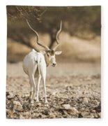 Addax Addax Nasomaculatus Fleece Blanket