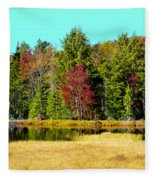 Adirondack Color Iv Fleece Blanket