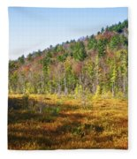 Adirondack Color Vi Fleece Blanket