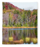 Adirondack Color Viii Fleece Blanket