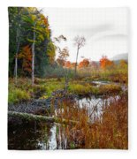 Adirondack Pond Iv Fleece Blanket