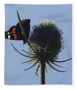 Admiral Teasel Fleece Blanket