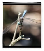 Adorable Dragonfly With Border Fleece Blanket