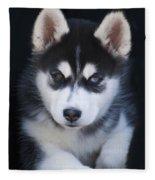 Adorable Siberian Husky Sled Dog Puppy Fleece Blanket