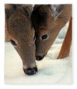 Adoring Love Fleece Blanket