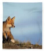 Adult Red Fox On The Tundra In Late Fleece Blanket