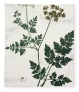 Aethusa Cynapium From Phytographie Fleece Blanket