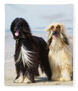 Afghan Hound Dogs Fleece Blanket