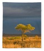 African Acacia Sunrise Fleece Blanket