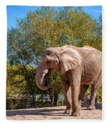 African Elephant 2 Fleece Blanket