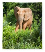 African Elephant Coming Through Trees Fleece Blanket