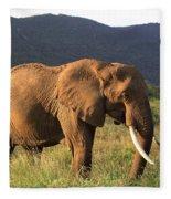 African Elephant Fleece Blanket