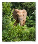 African Elephant Eating In The Shrubs Fleece Blanket
