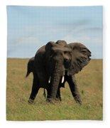 African Elephant Masai Mara Kenya Fleece Blanket