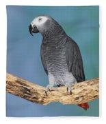African Gray Parrot Fleece Blanket