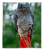 African Grey Parrot Fleece Blanket