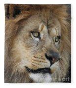 African Lion #5 Fleece Blanket