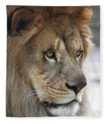 African Lion #8 Fleece Blanket