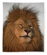 African Lion-animals-image Fleece Blanket