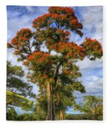 African Tulip At Liliuokalani Park Fleece Blanket