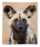 African Wild Dog Fleece Blanket