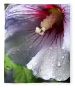 After The Rain Fleece Blanket