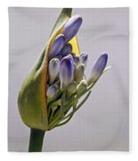 Agapanthus Blue Fleece Blanket