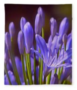 Agapanthus - Lily Of The Nile - African Lily Fleece Blanket