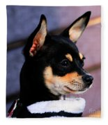Agie - Chihuahua Pitbull Fleece Blanket