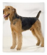 Airedale Terrier Dog Fleece Blanket