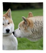 Akita Inu Dogs, Old And Young Fleece Blanket