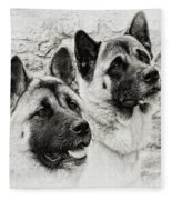 Akitas Fleece Blanket