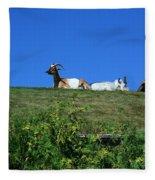 Al Johnsons Resturant Goats Fleece Blanket