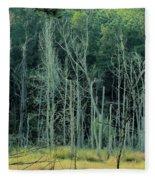Alabama Autumn Marsh Fleece Blanket
