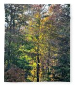Alabama Forest In Autumn 2012 Fleece Blanket