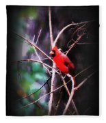 Alabama Rain - Cardinal Fleece Blanket