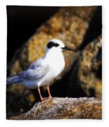 Alabama Tern Fleece Blanket