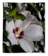 Alabama Wildflower -  Woolly Rose Mallow Fleece Blanket