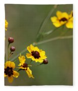 Alabama Wildflowers Coreopsis Tinctoria Tickseed Fleece Blanket