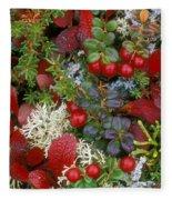 Alaskan Berries 2 Fleece Blanket
