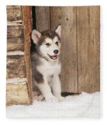 Alaskan Malamute Puppy Fleece Blanket