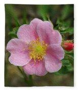 Alberta's Wild Rose Fleece Blanket