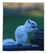 Albino Squirrel Fleece Blanket