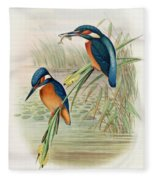 Alcedo Ispida Plate From The Birds Of Great Britain By John Gould Fleece Blanket