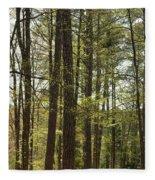 Aldridge Lake Trail Fleece Blanket