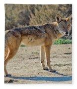 Alert Coyote Fleece Blanket