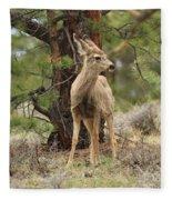 Alert In The Rockies Fleece Blanket