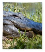 Alligator Smiling Fleece Blanket